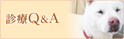 診療Q&A