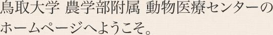 鳥取大学 農学部附属 動物医療センターの ホームページへようこそ。